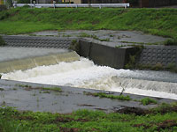 梅雨の大雨で増水している天白川