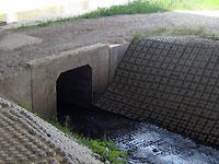 天白川へ合流する雨水