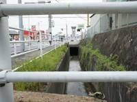 水路が道の下へ消えていく