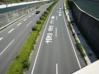 道路の白文字