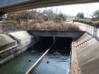 愛知池への入口トンネル