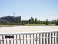 ゆりのき橋