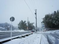 大雪でこまった