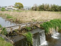 竹でできた堰