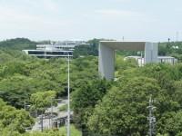 名古屋商科大学を眺める