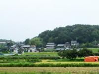 稲刈り中断