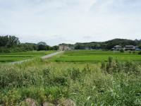 米野木台西保育園の裏に広がる
