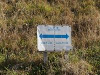 愛知牧場の北側3