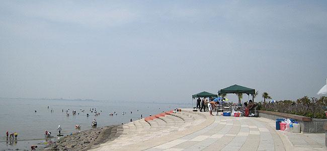 潮干狩りビーチ バーベキューOK