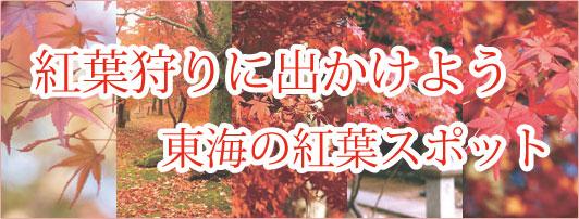 東海の紅葉狩りスポット