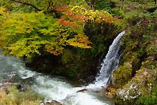 豊田市稲武 大井平公園 名倉川の清秋と紅葉