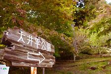 豊田市稲武 大井平公園入り口