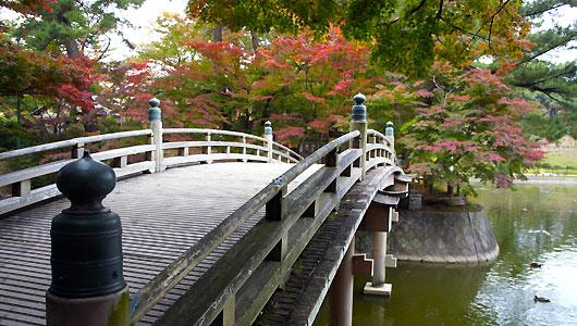岡崎東公園 1500本の紅葉と観月橋