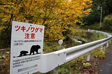 豊田市稲武の山里にも熊出没注意の看板