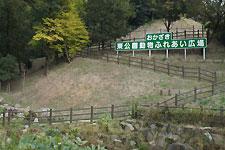 岡崎東動物園・ふれあい広場